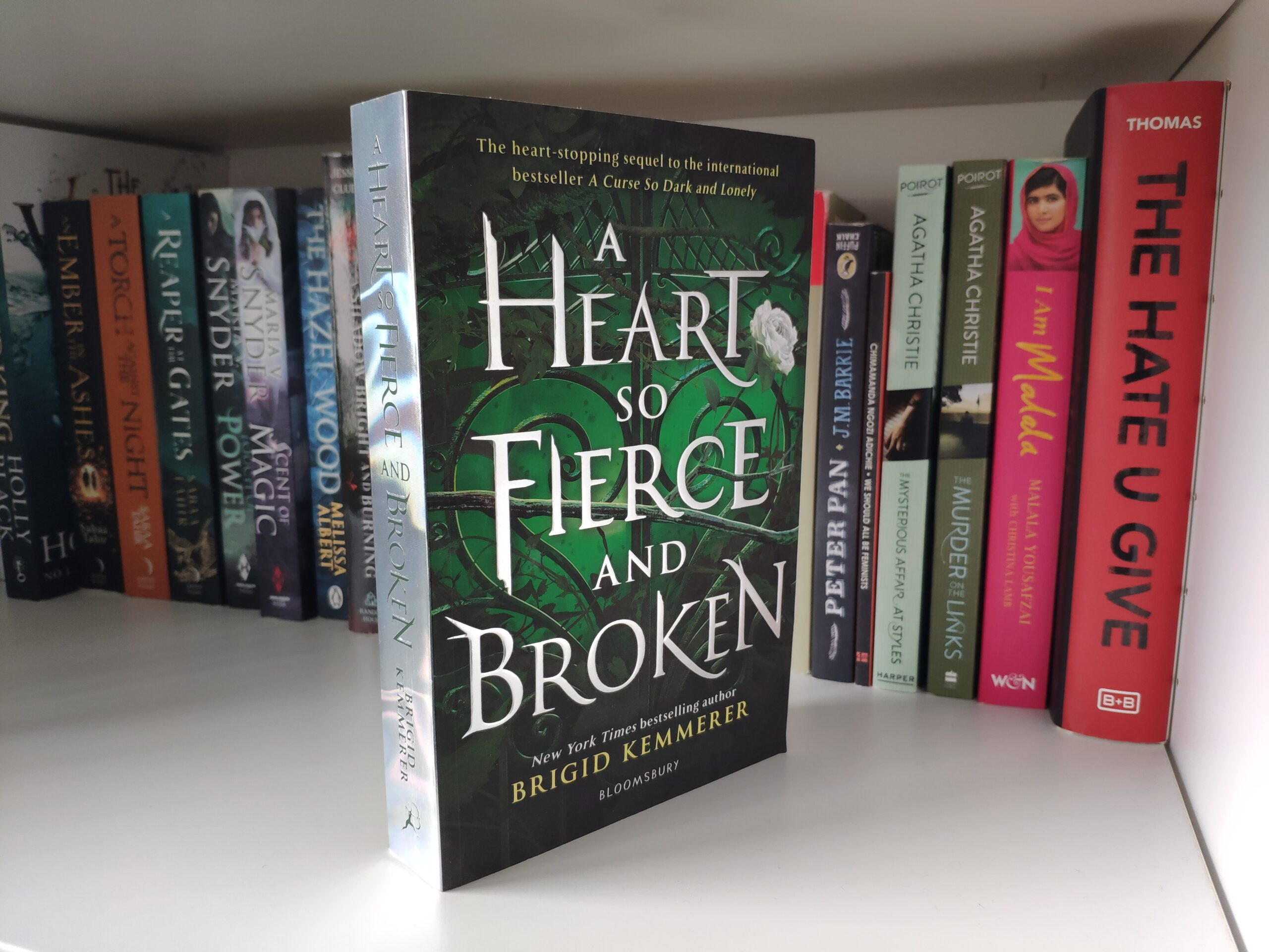Book Review: A Heart So Fierce And Broken