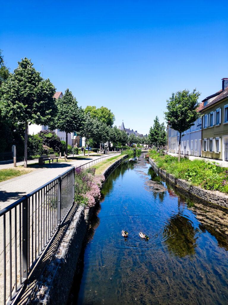 Fluss am Wallgraben in Detmold.